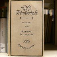 niemiecka książka